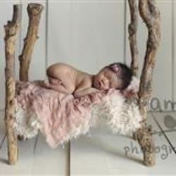 Amber Miller Newborn Photographer - profile picture