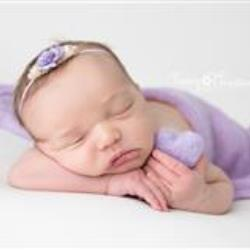 Tracy Zado Newborn Photographer - profile picture