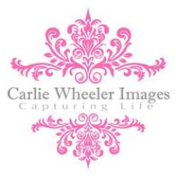 Carlie Wheeler Newborn Photographer - profile picture