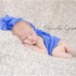 Pamela Gammon Newborn Photographer - profile picture