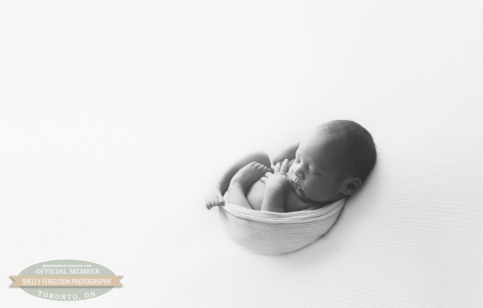 Shelly Ferguson Photography - Toronto, Canada - Newborn Photography